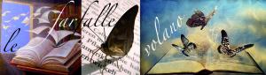 Le farfalle volano