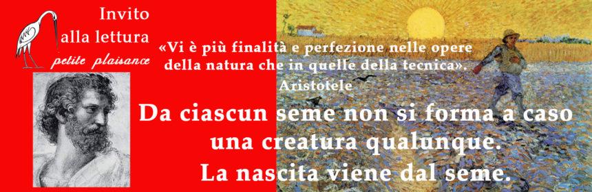 Aristotele 001
