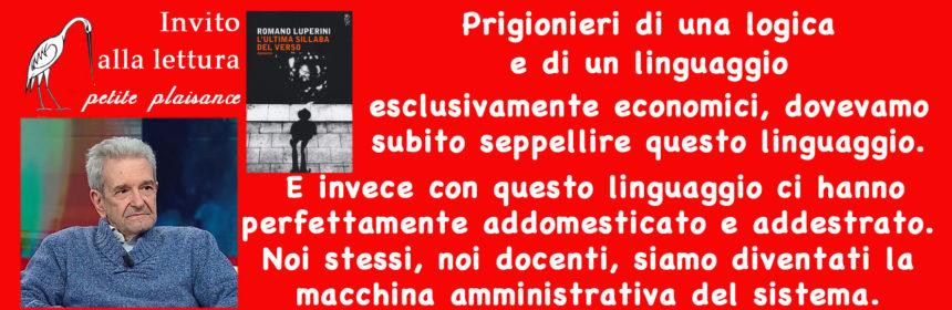 Luperini Romano 02