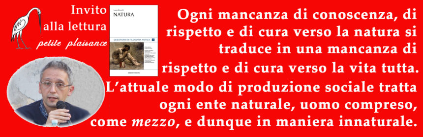 Grecchi Luca027