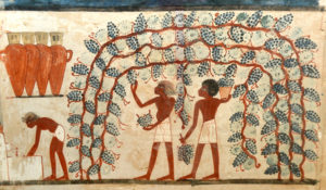 Uomini che fanno il vino, dettaglio della pittura murale egizia della XVIII dinastia (XVI – XIV secolo a.C.), tomba di Nakht, Tebe