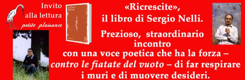 Sergio Nelli 001