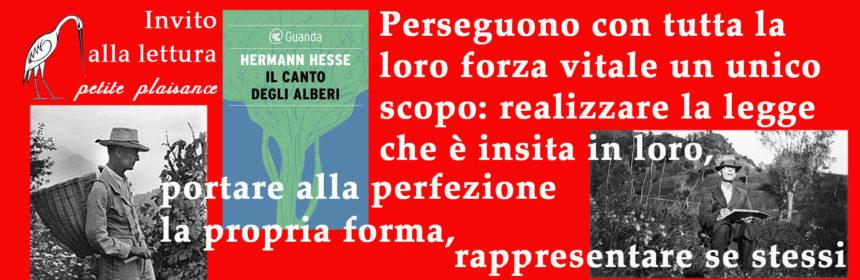Hermann Hesse01
